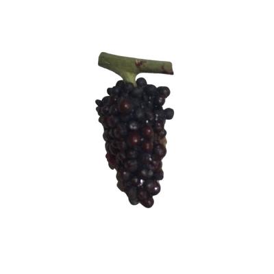 Ceppo di uva nere per pastori fino a 15 cm